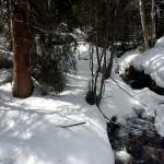 Frisco, CO hike